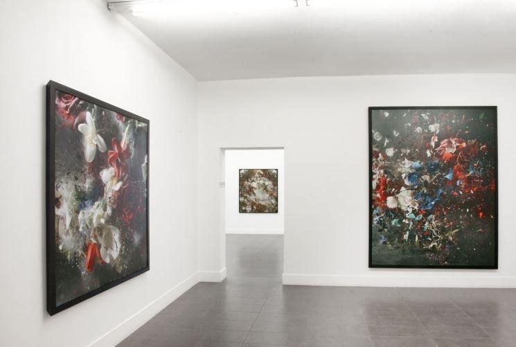 Ori Gerhst è in mostra fino al 9 marzo alla Brand New Gallery di via Farini a Milano.