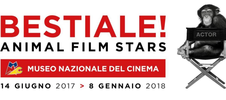BESTIALE! Animal Film Stars - Una mostra per tutti